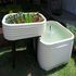 OFFERED: Get to Know Aquaponics Australia