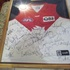 FOR SALE: FRAMED-Sydney-Swans-2003-Signed-jerseys-all-32-players