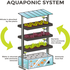 SERVICES: Learn All about Aquaponics in WA