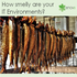 SERVICES: Top 8 Things That Indicate Your It & Test Environments Smell Like A Kipper
