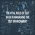 SERVICES: The Vital Role Of Test Data In Managing The Test Environment