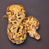 FOR SALE / ADOPTION: RARE, EXOTIC CAPTIVE BRED REPTILES FROM AROUND THE WORLD...107