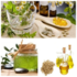 SERVICES: La Medicca - Essential Oils Suppliers in India