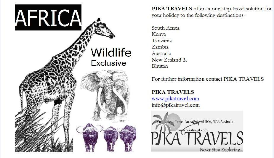 SERVICES: Travel Packages To AFRICA