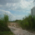 FOR SALE: Agriculture Land For Sale In Balakong, Selangor
