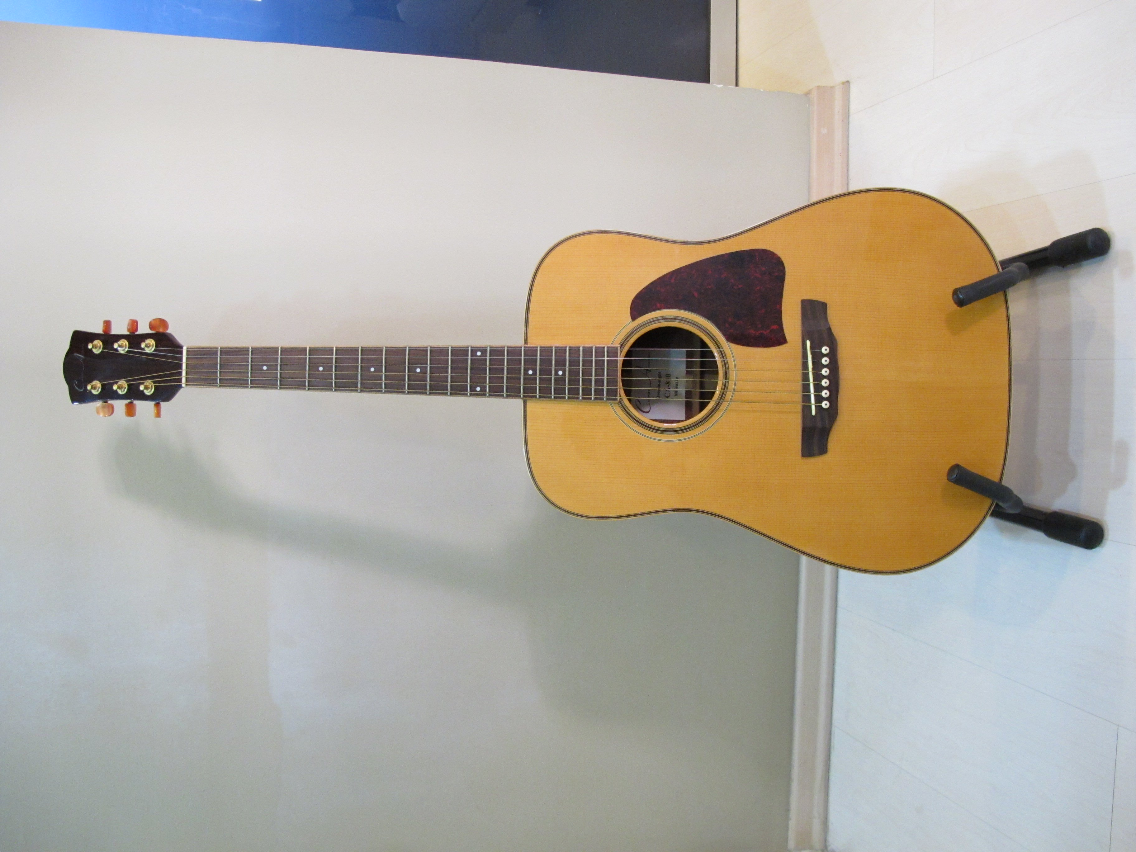 FOR SALE: *SOLD**Custom Acoustic Dreadnought CA810