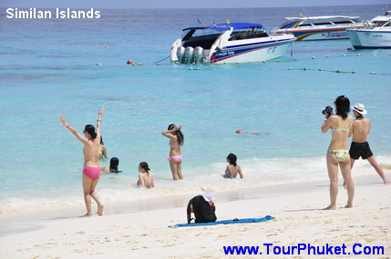 FOR SALE: Phuket Transportation Booking-Taxi from Airport-Transfer services in Phuket