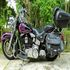 FOR SALE: Limited Edition Harley HERITAGE, Softail Classic. COE 2027