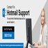 SERVICES: Hotmail Support New Zealand
